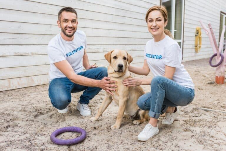 man woman volunteering at humane center with dog